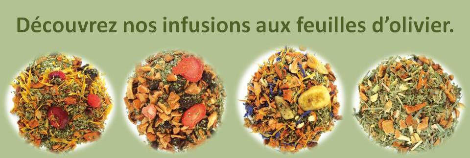 Infusions_feuilles_d_olivier
